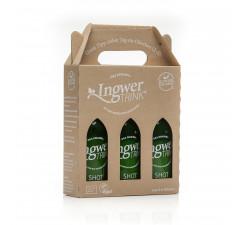 3 x 250 ml Vorteilspackung Ingwer-Trink